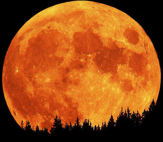 blood-moon1.jpg